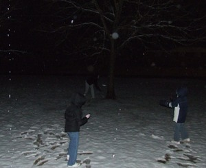 Snow_2008_fort_lawn_sc